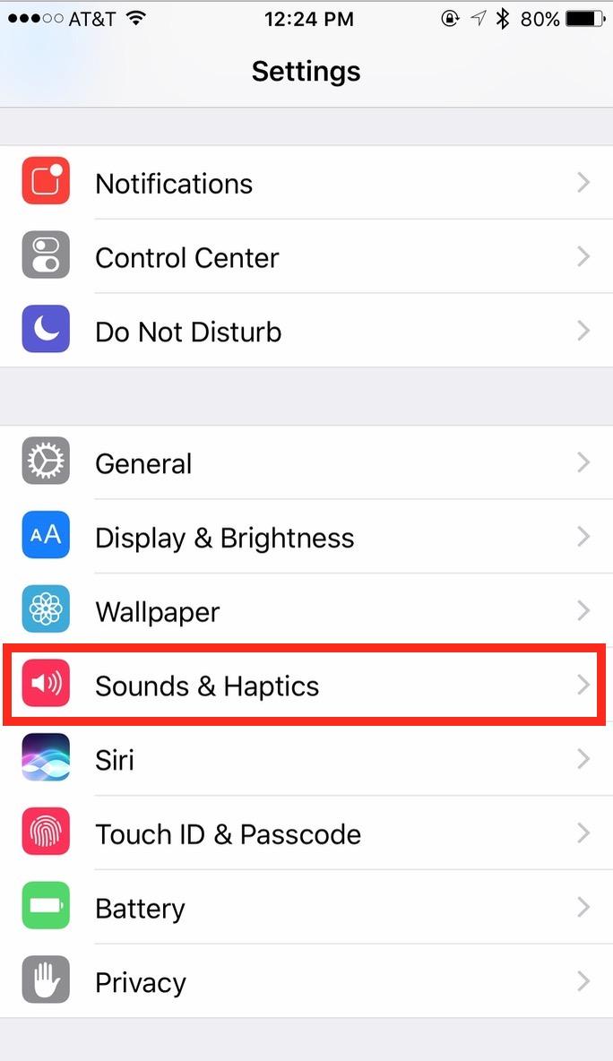 iPhone Sounds & Haptics settngs