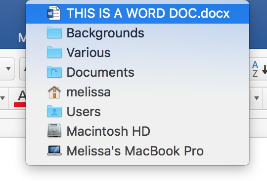 Showing a Word document's path from the document Title Bar only works with Control-click or right-click