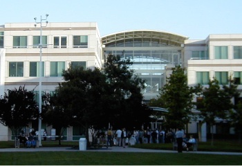 Apple employees at Infinite Loop on the courtyard side.