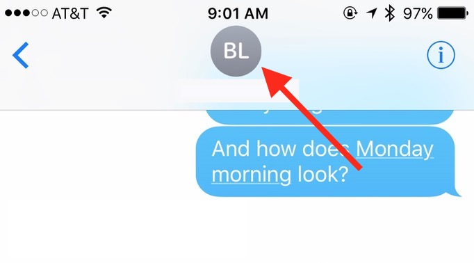 Tap the name at the top of a chat in Messages to get Contact Info