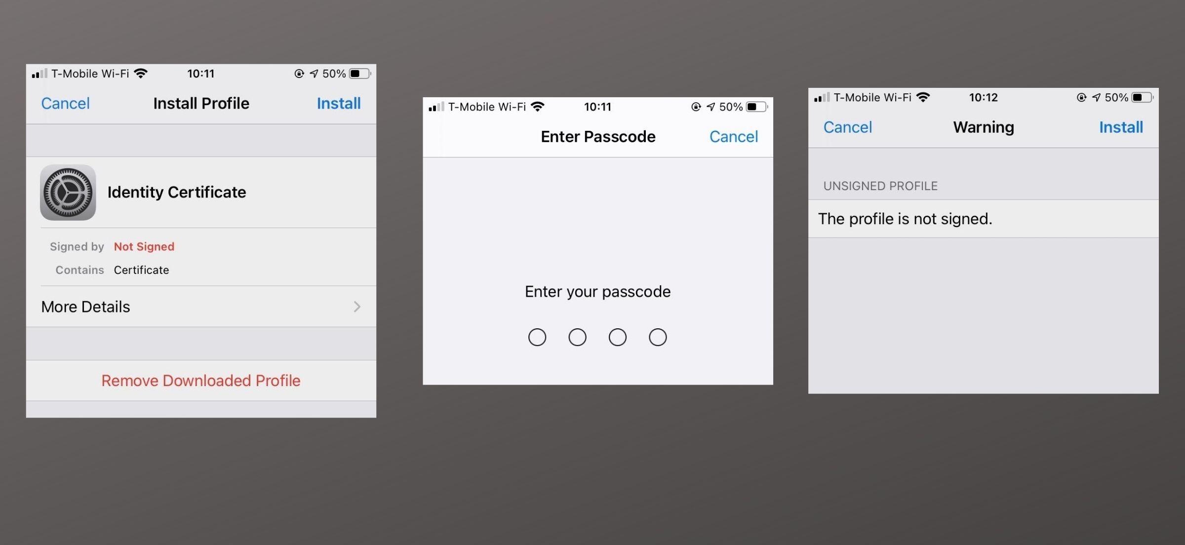 iOS 14 Mail Encryption Install 2