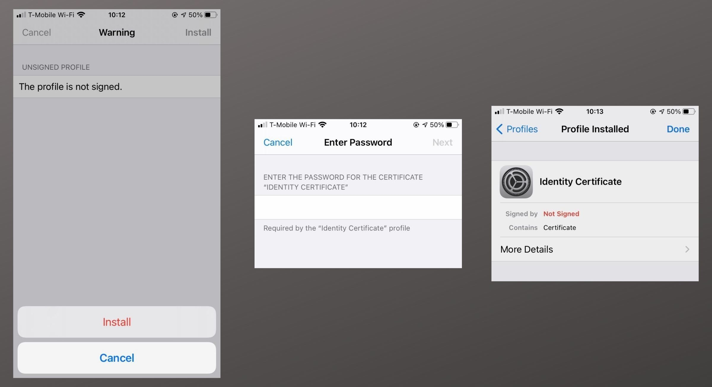 iOS 14 Mail Encryption Install 3