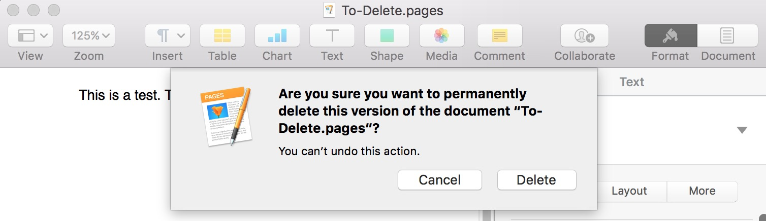 Dialog confirming the Delete This Version command for a document in macOS