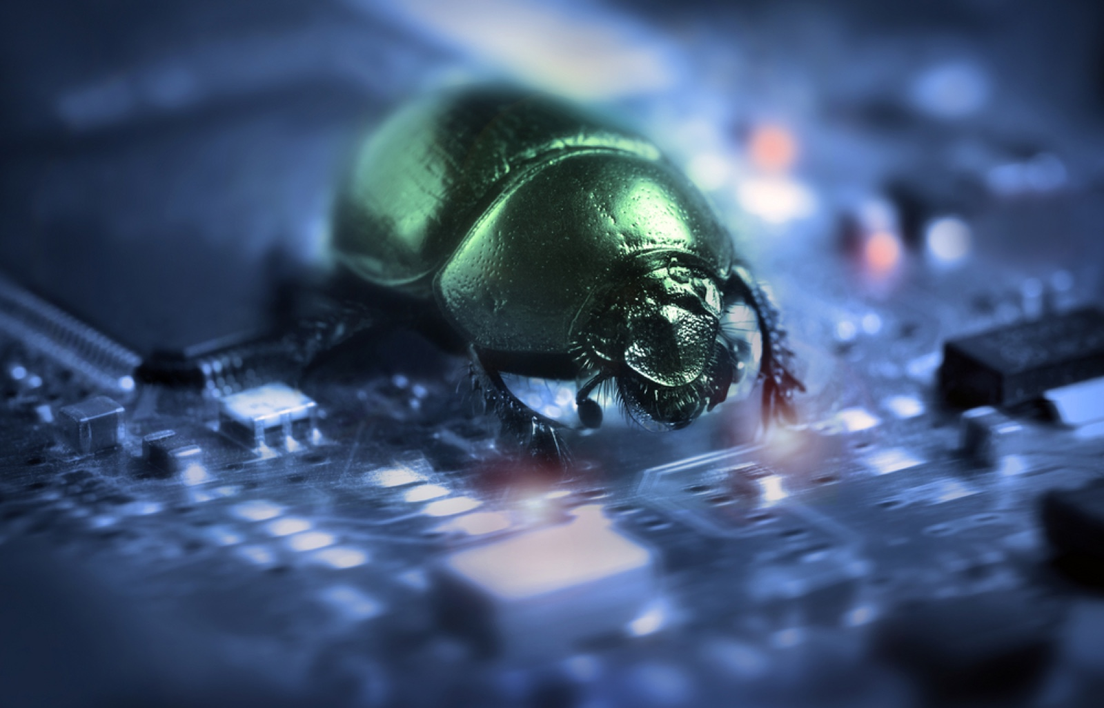 Hackers can submit bugs, like this artist rendering, to the Air Force bug bounty program.