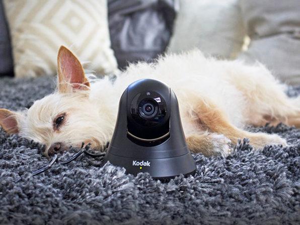 Kodak HD WiFi Pet Monitor: $72.99