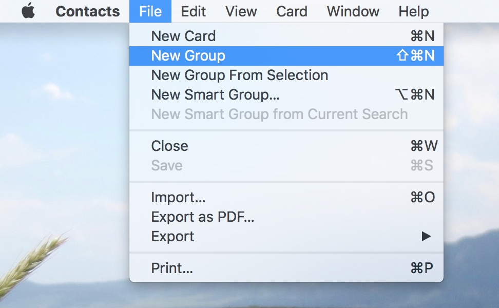 Choose File > New Group in Contacts to make a group for the contacts you want to archive