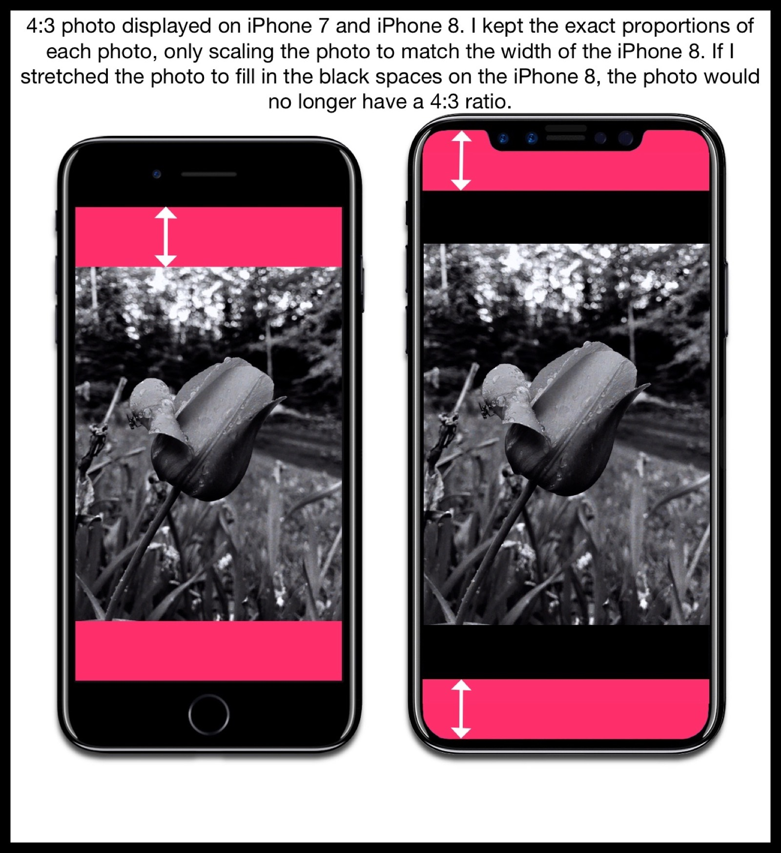 Image comparing how the iPhone 7 and iPhone 8 mockup displays photos with a 4:3 aspect ratio.