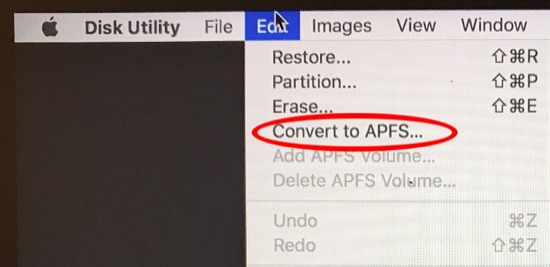 Disk Utility Edit menu showing the Convert to APFS option