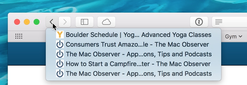 Back Button in Safari showing browser history