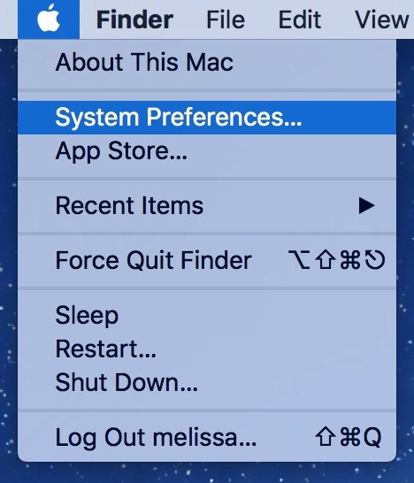 Apple Menu's System Preferences gets you to the Adobe Flash settings and updater