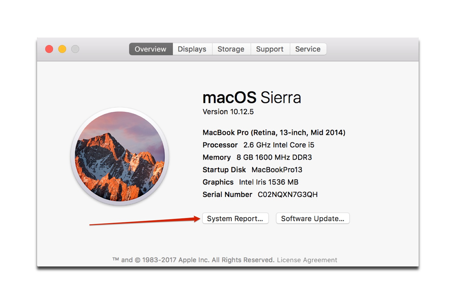Clicking on system report will bring up a list of 32 bit Mac apps.