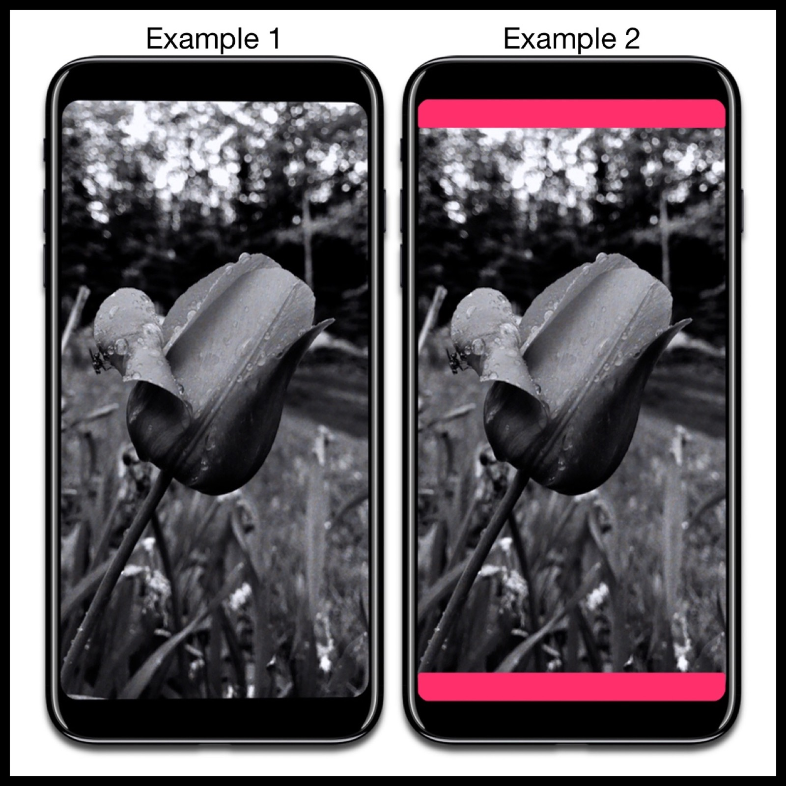 Image of iPhone 8 mockup showing how 16:9 photos should be displayed. With borders or full screen.