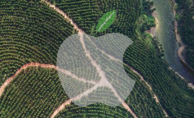 Forest in Guangxi Province, with Apple's Green logo