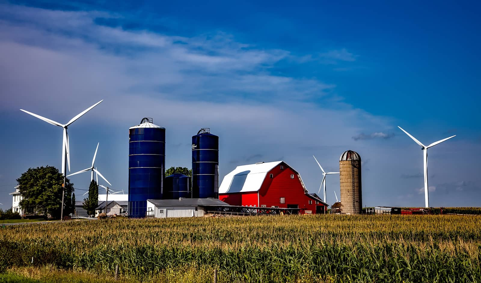 Image of a farm in Iowa. Maybe a new Apple data center could be next door?