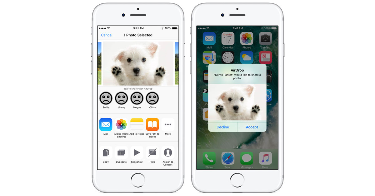 Help People with Insecure AirDrop Settings in PetDrop Club