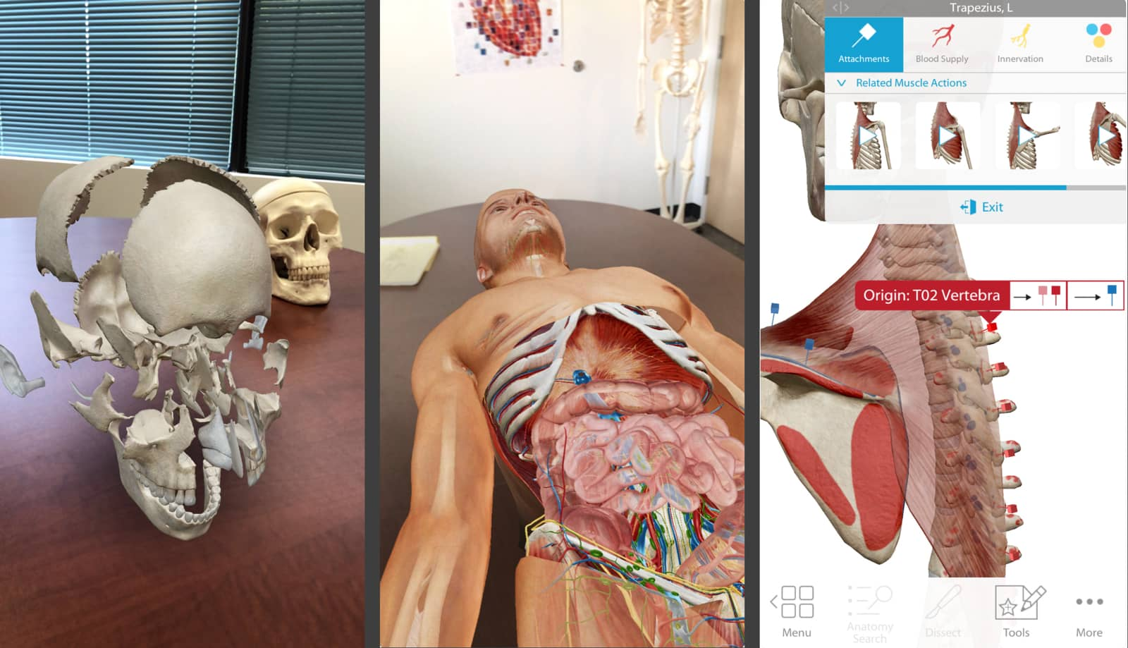Human Anatomy Atlas, one of the new AR apps and games.