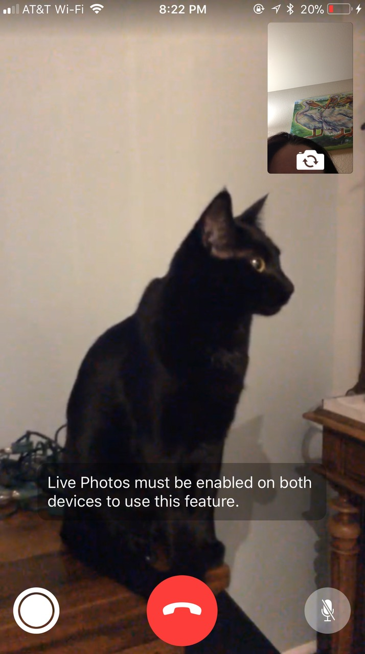 FaceTime Live Photos Warning saying the feature is disabled
