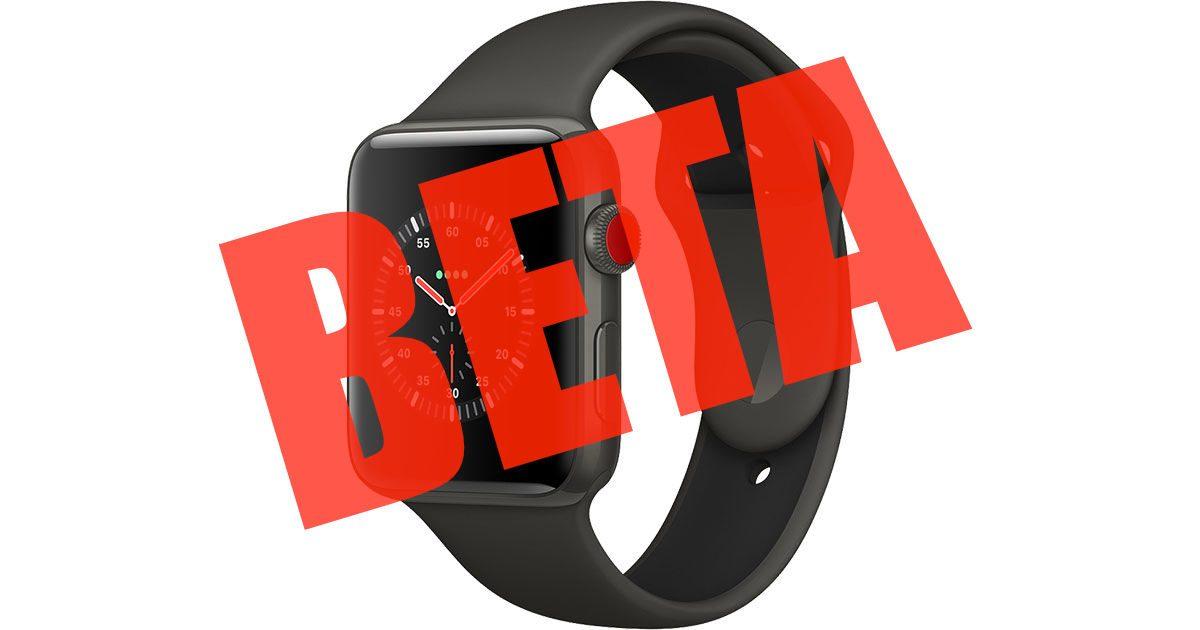 watchOS developer beta on Apple Watch