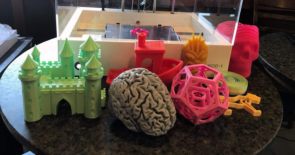 Several example prints made with MOD-t. The brain is a 3/4 size print of a friend of the CEO's brain.