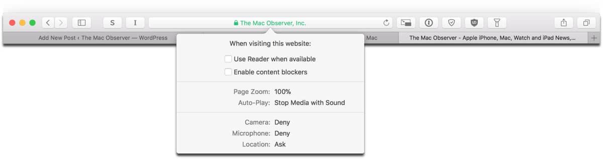 Accessing Safari Website Controls from the address bar.