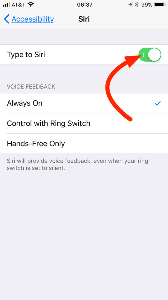iOS 11 Type to Siri settings