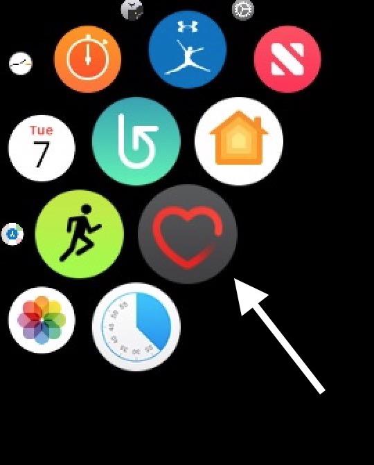 Heart App icon on Apple Watch