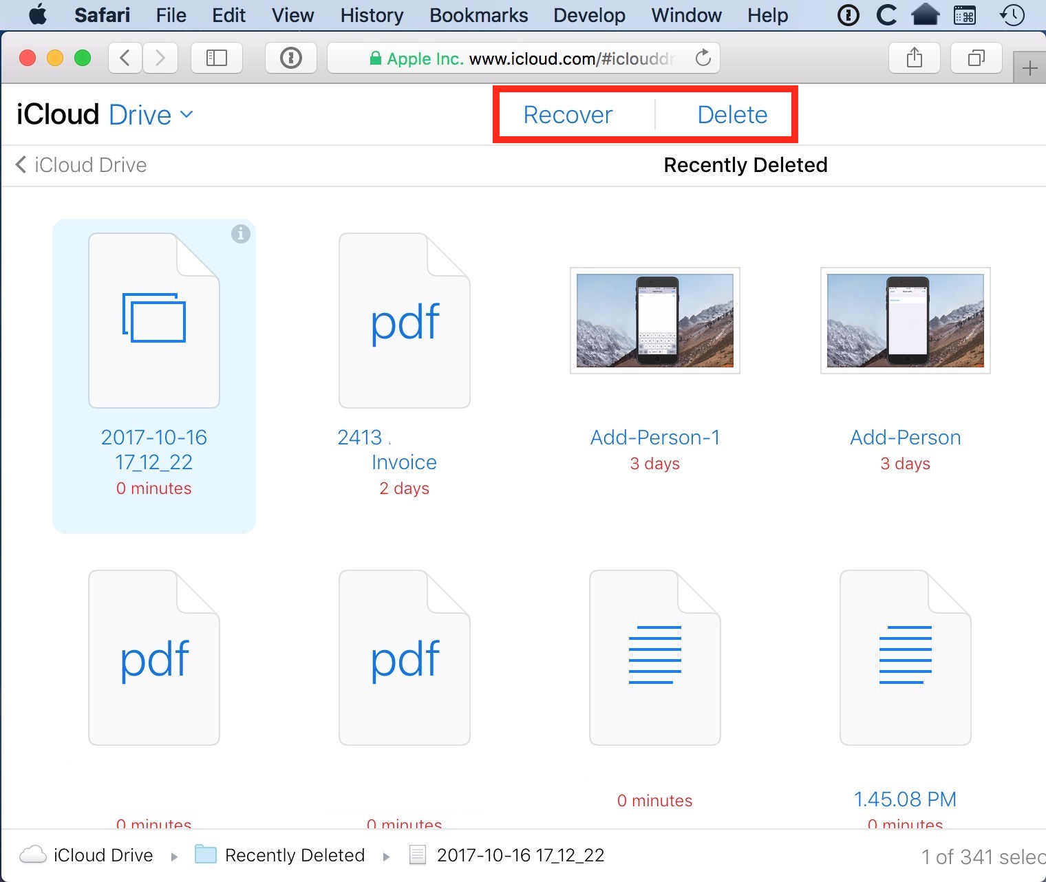 Recently Deleted Items in iCloud Drive