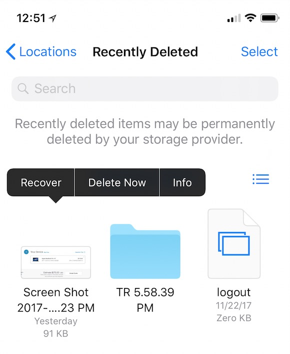 iCloud Drive Recently Deleted items in Files app on iOS