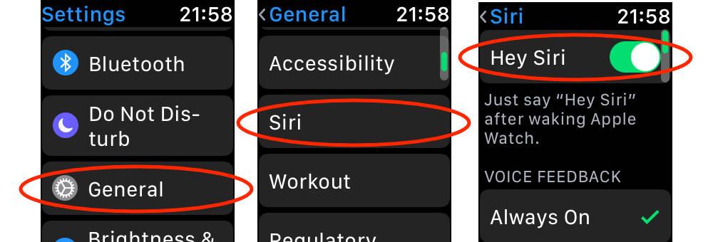 Hey Siri settings on Apple Watch Series 3