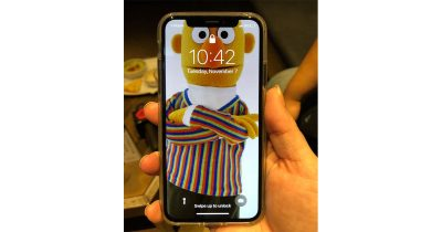 Ernie and the iPhone X Notch