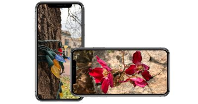 iPhone X showing photos in portrait and landscape mode