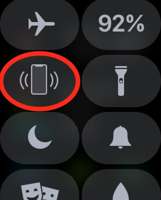 "Apple Watch Control Center showing the ""Ping your iPhone"" button"