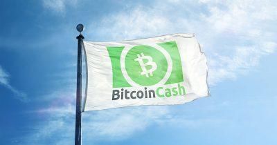 Bitcoin Cash on a flag