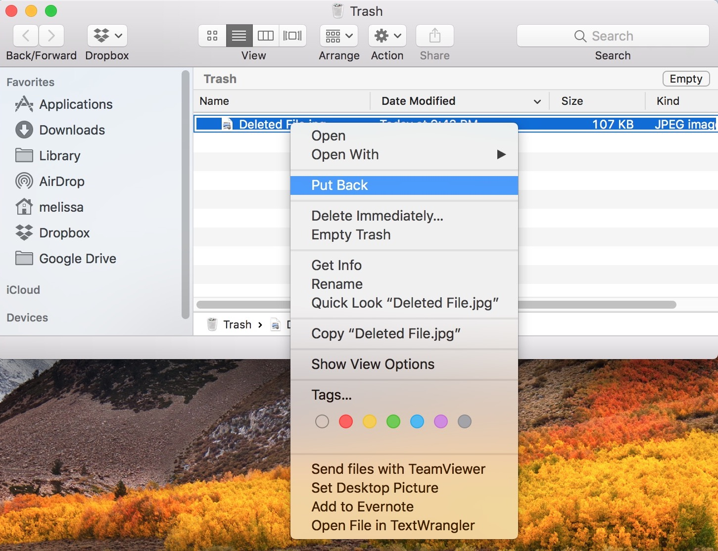 Put Back Option in macOS Trash