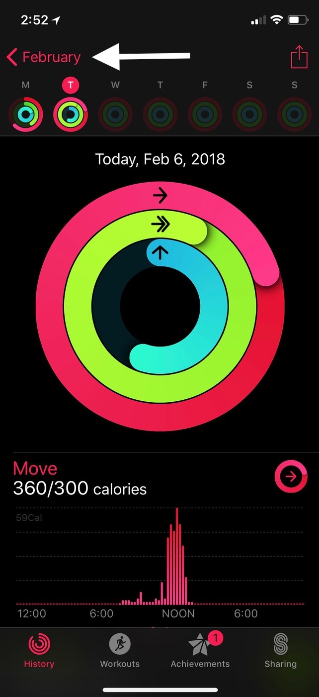 Activity Day View in iPhone Activity app