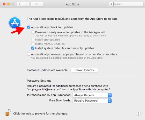 Mac App Store Preferences.
