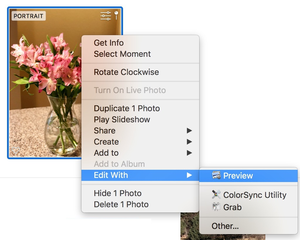Right-Click Menu in Photos app showing Edit With option
