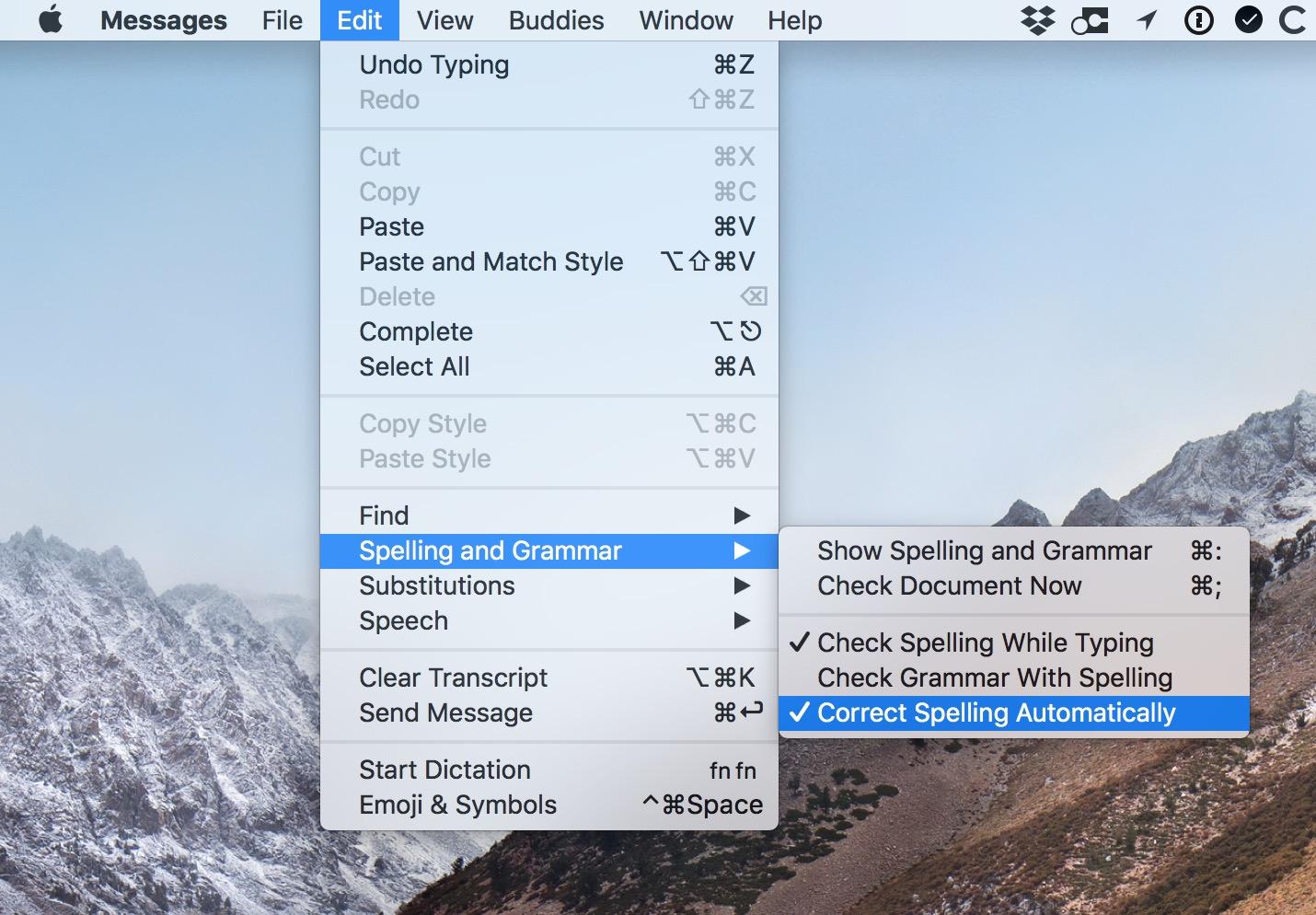 Mac app Edit Menu settings for Spelling and Grammar