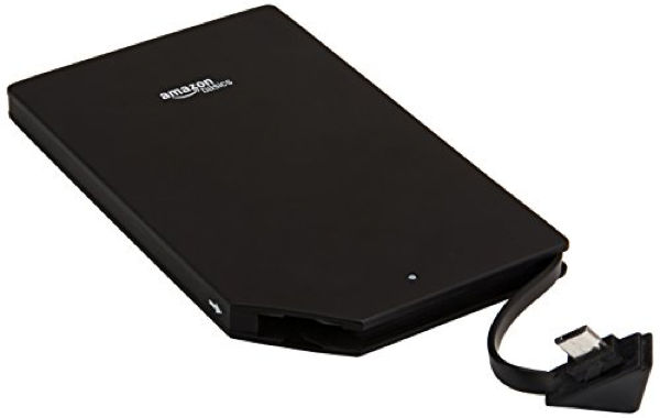 One of the  AmazonBasics power banks.