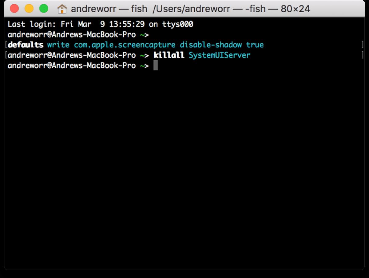 Screenshot of Terminal commands do disable screenshot shadows.