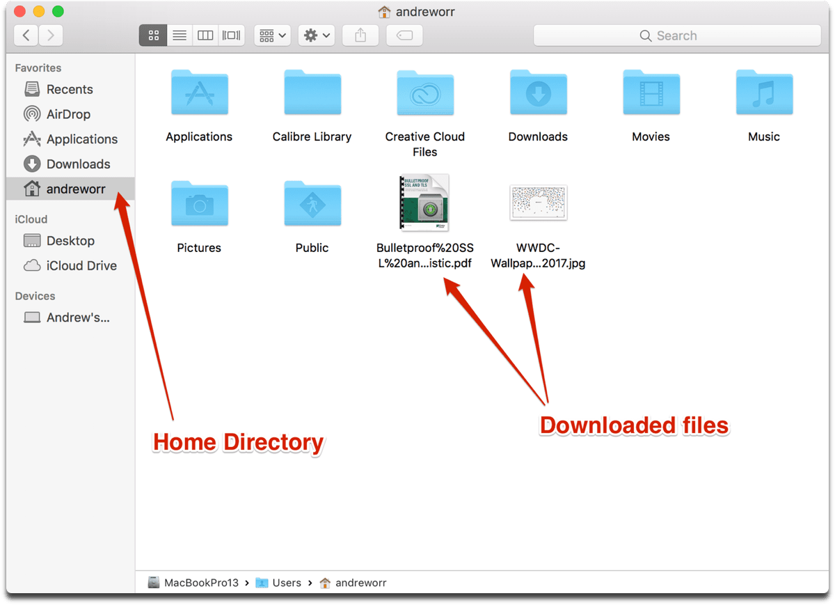 Download files in Terminal. Location of the files in Finder.