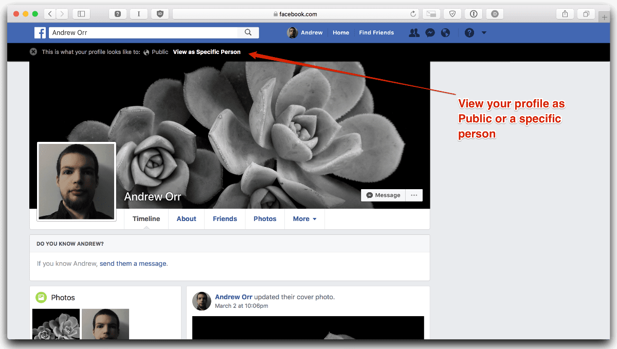 Test your Facebook privacy by selecting the point of view you want.