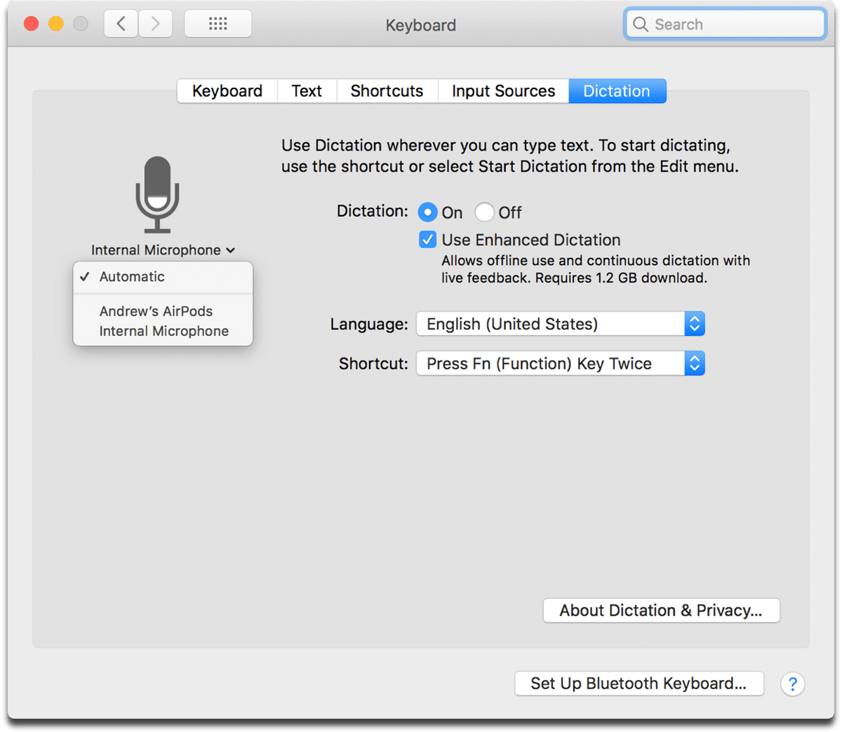 Turning on Mac Dictation in System Preferences.