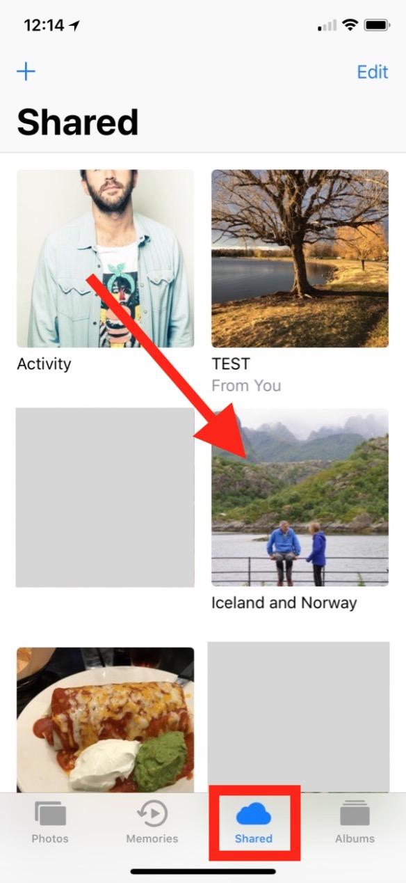 Shared Albums in Photos on iPhone