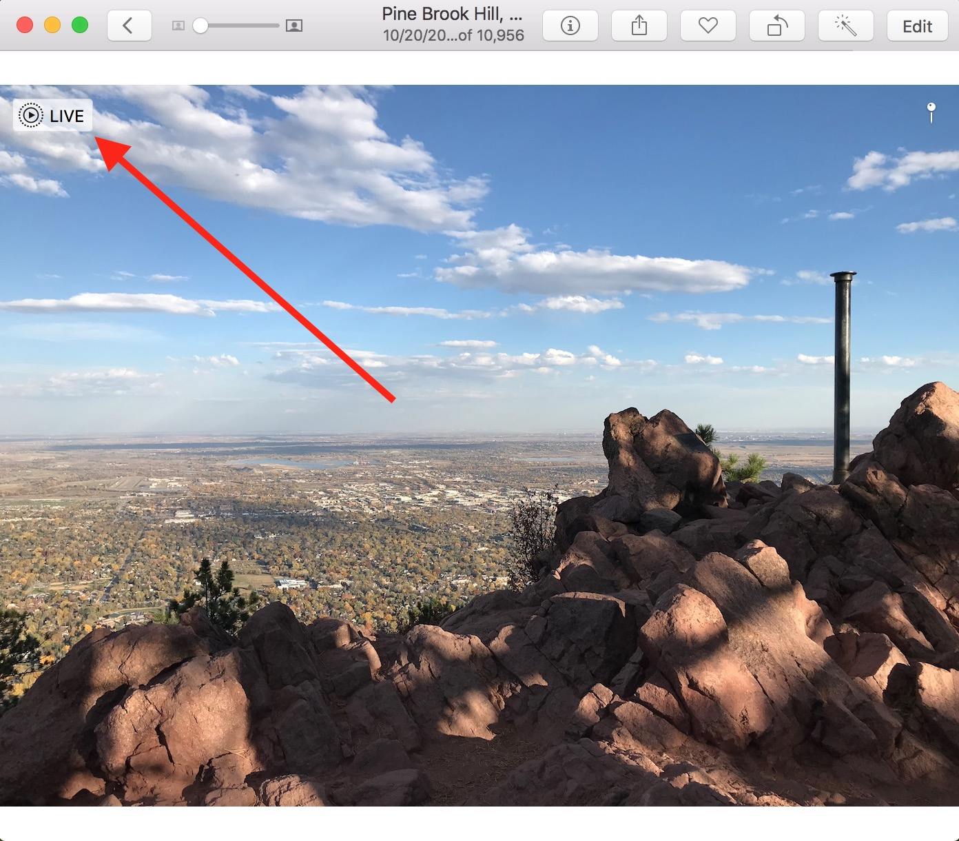 Live Photo Icon in image in Mac Photos app