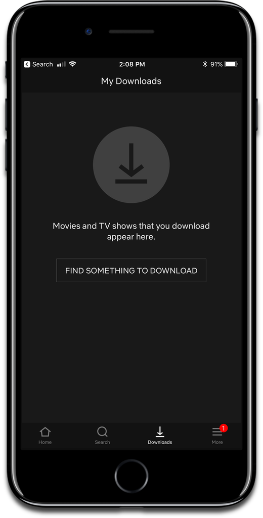 Download Netflix shows on your iOS device.
