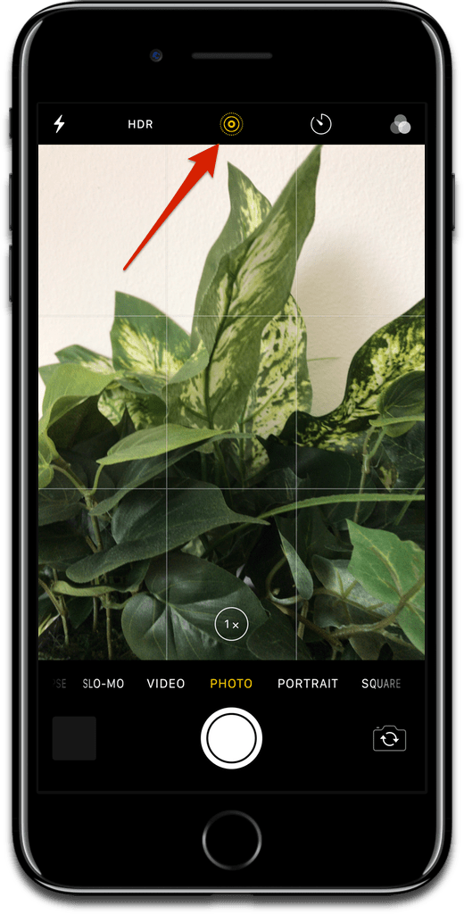 Taking Live Photos with an iPhone.