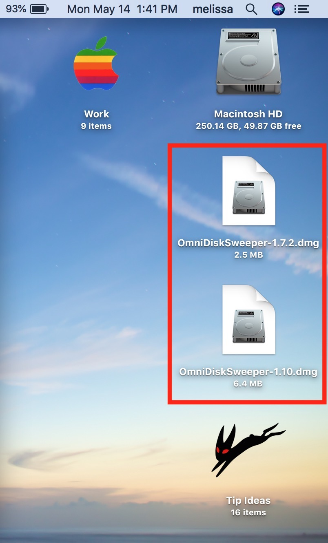 OmniDiskSweeper Files on Desktop