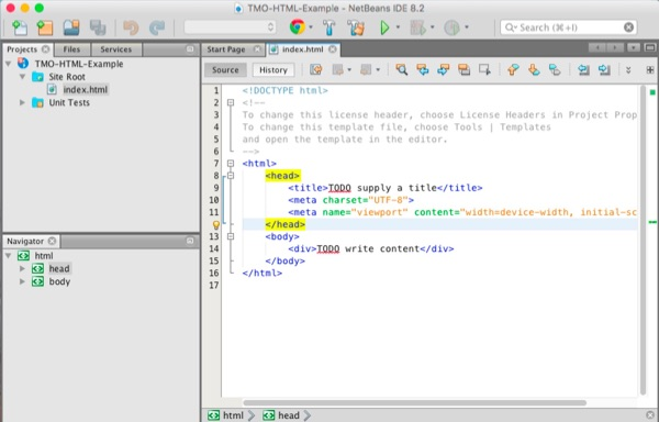 The NetBeans IDE.