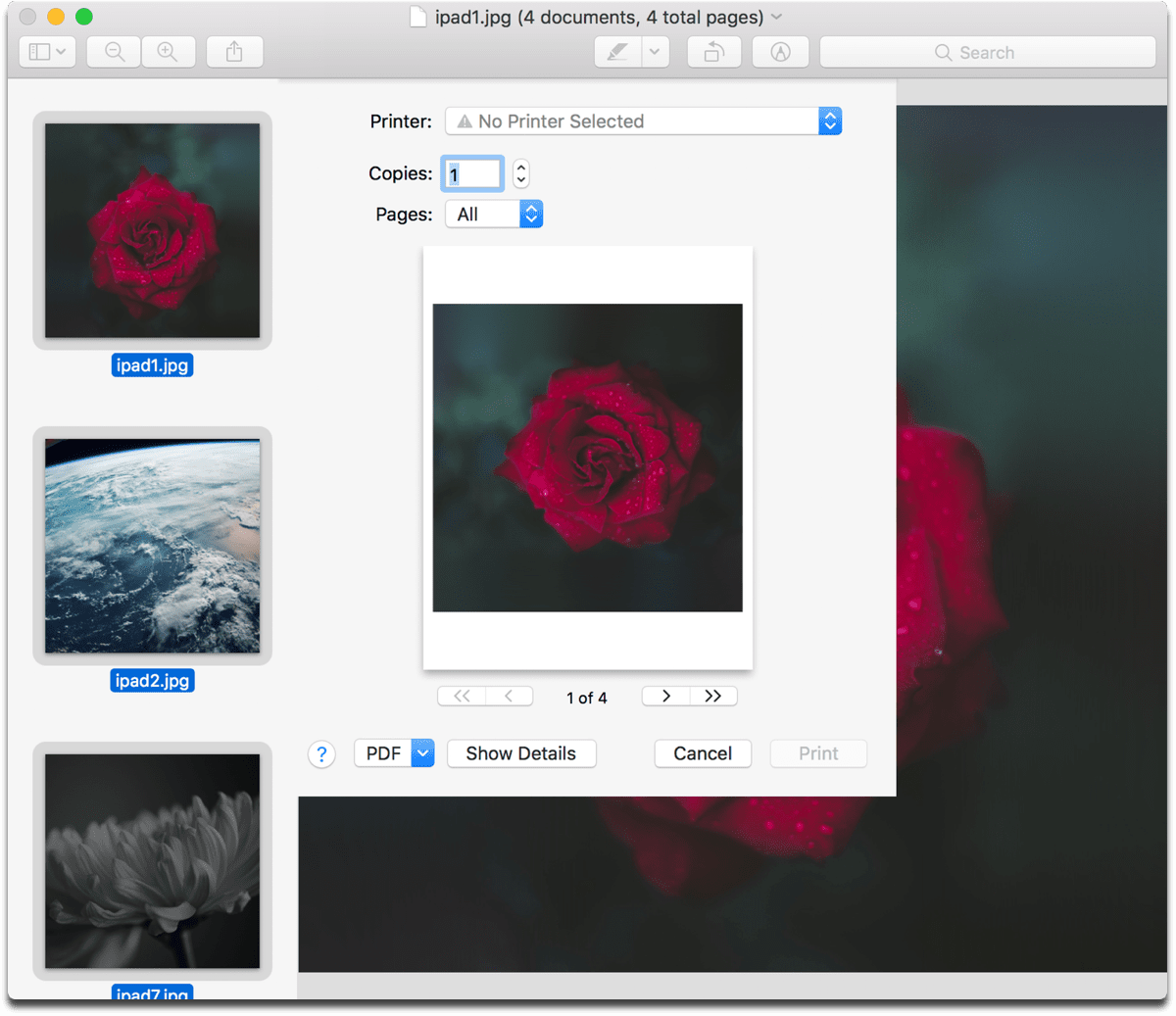 Save Multiple Images in Preview as a PDF as shown here.